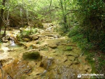 Cañones Ebro, Alto Campoo, Brañosera,Valderredible; viaje de semana santa agencia de viajes en aut